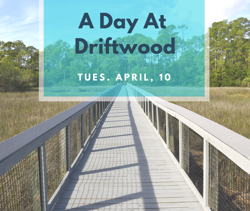 A Day at Driftwood