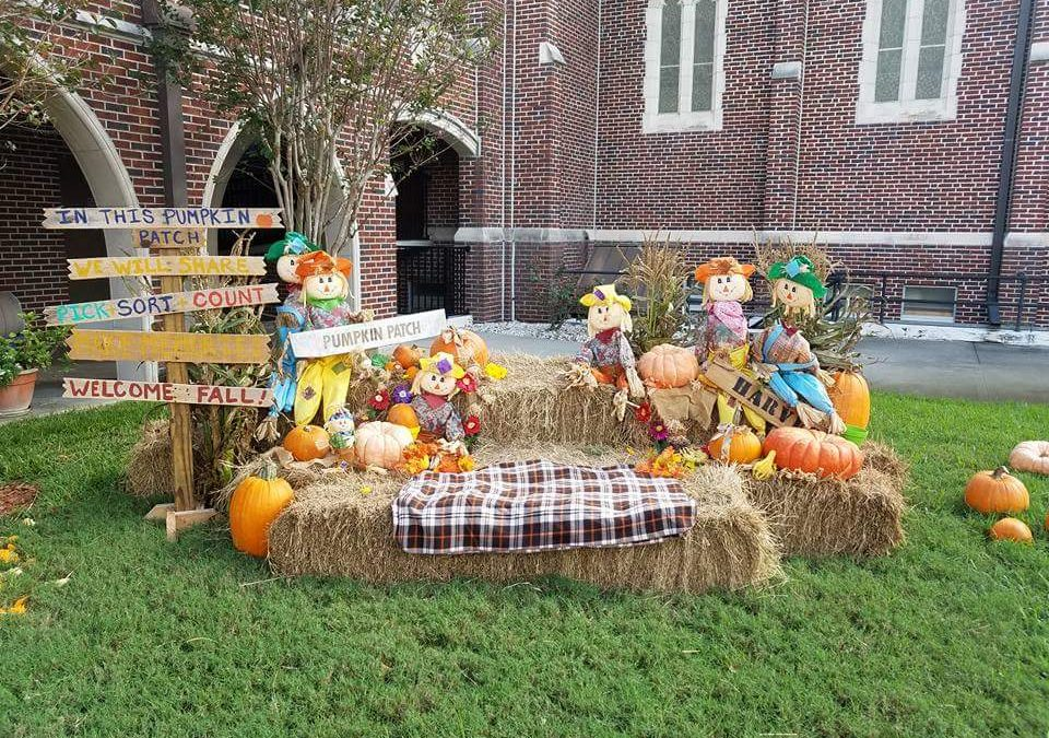 Another Great Pumpkin Patch
